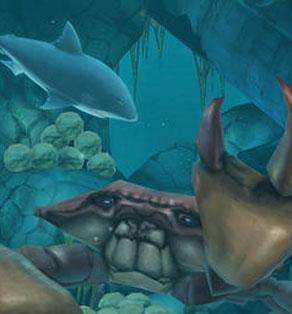 壁纸 海底 海底世界 海洋馆 水族馆 292_314