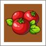 摩尔庄园西红柿