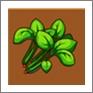 摩尔庄园菠菜