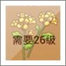 摩尔庄园油菜花
