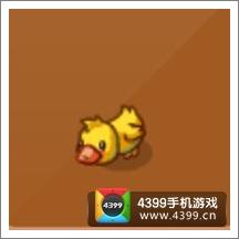摩尔庄园豪华版小鸭鸭