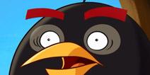 暴力轰炸 全新《愤怒的小鸟》黑鸟详解