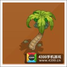 摩尔庄园豪华版椰树