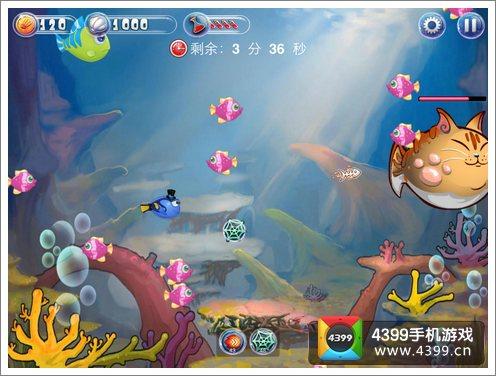 吞吞鱼评测