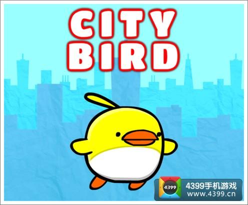 city bird闪退