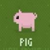 disco zoo猪