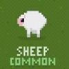 迪斯科动物园绵羊