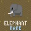 迪斯科动物园大象