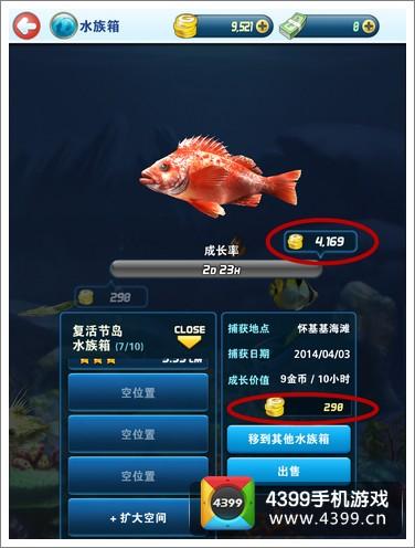 钓鱼发烧友养鱼