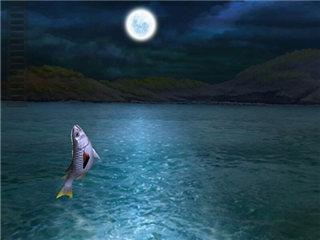 钓鱼发烧友怎么避免鱼线断掉 提升钓鱼成功率
