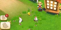 开心农场2乡村度假怎么养鸡 养鸡攻略