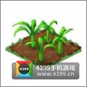 全民小镇甘蔗种子建造时间 所需等级详细数据