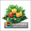 全民小镇甜椒种子建造时间 所需等级详细数据