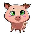 全民切水果懵懵猪