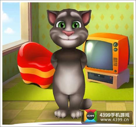 我的汤姆猫新版本