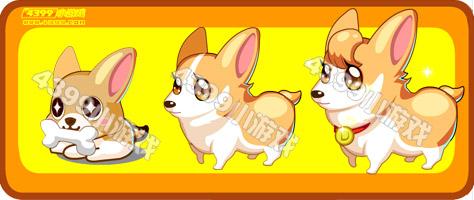 奥比岛小黄柯基犬