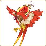 卡布西游赤炎鸟