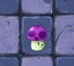 植物大战僵尸2小喷菇