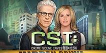 一切无愧于心 《CSI:暗罪谜踪》评测