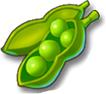 全民农场豌豆