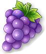 全民农场葡萄