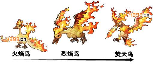 去吧皮卡丘火焰鸟形态变化