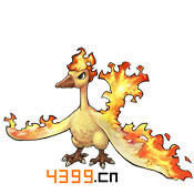 去吧皮卡丘火焰鸟