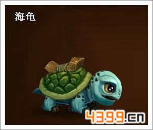 酋长萨尔海龟