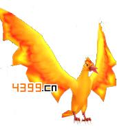口袋妖怪火焰鸟图鉴