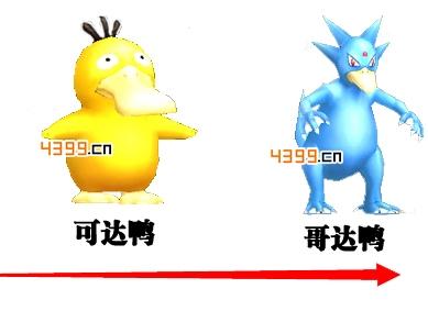 口袋妖怪可达鸭进化流程详解
