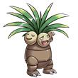 宠物小精灵椰蛋树怎么样 椰蛋树精灵属性