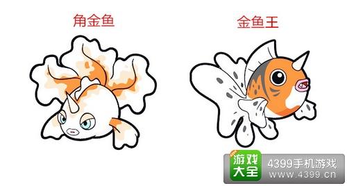 口袋妖怪3D角金鱼进化