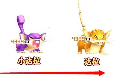 口袋妖怪3D小拉达进化
