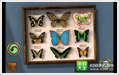 恐怖庄园的秘密蝴蝶标本