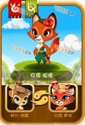 功夫宠物玫瑰狐狸