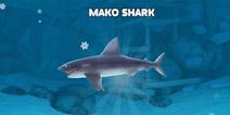 饥饿鲨:进化怎么解锁灰鲭鲨 礁鲨进化灰鲭鲨方法