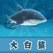 饥饿的鲨鱼:进化大白鲨