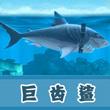 饥饿的鲨鱼:进化巨齿鲨