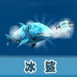 饥饿的鲨鱼:进化冰鲨