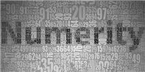 numerity怎么玩 读数找图新手攻略