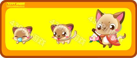 奥比岛小花猫-花灯狸猫进化图鉴及获得方式