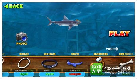 饥饿鲨进化灰鲭鲨