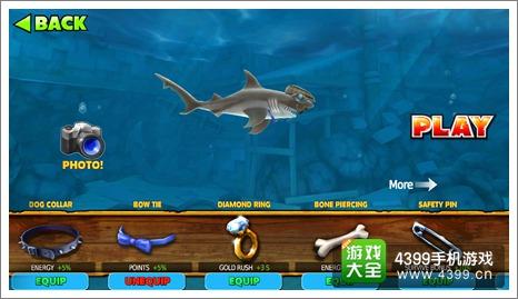 饥饿鲨进化锤头鲨