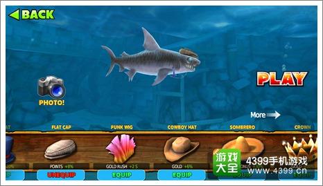 饥饿鲨进化虎鲨