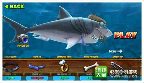 饥饿鲨进化巨齿鲨