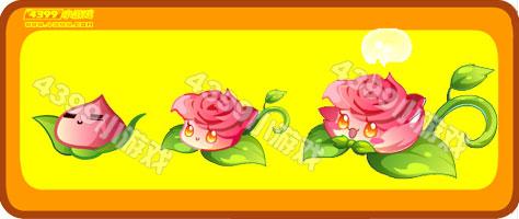 奥比岛可爱玫瑰坐骑图鉴