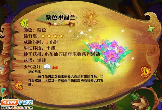 小花仙水晶兰 水晶兰花种