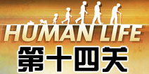 人类生活第14关怎么过 human life第十四关攻略