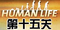人类生活第15关怎么过 human life第十五关攻略