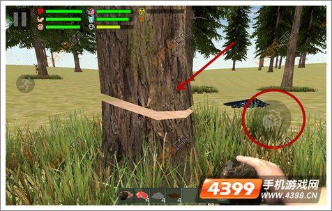 幸存者遗忘的森林怎么玩